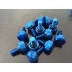 Set 12 x Bead lock screws blue