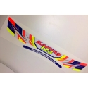 IAME VISOR STICKER