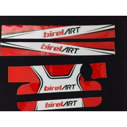 STICKER RADIATOR IAME X30 MEDIUM SIZE BIRELART