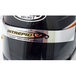 INTREPID CHROME VISOR STICKER